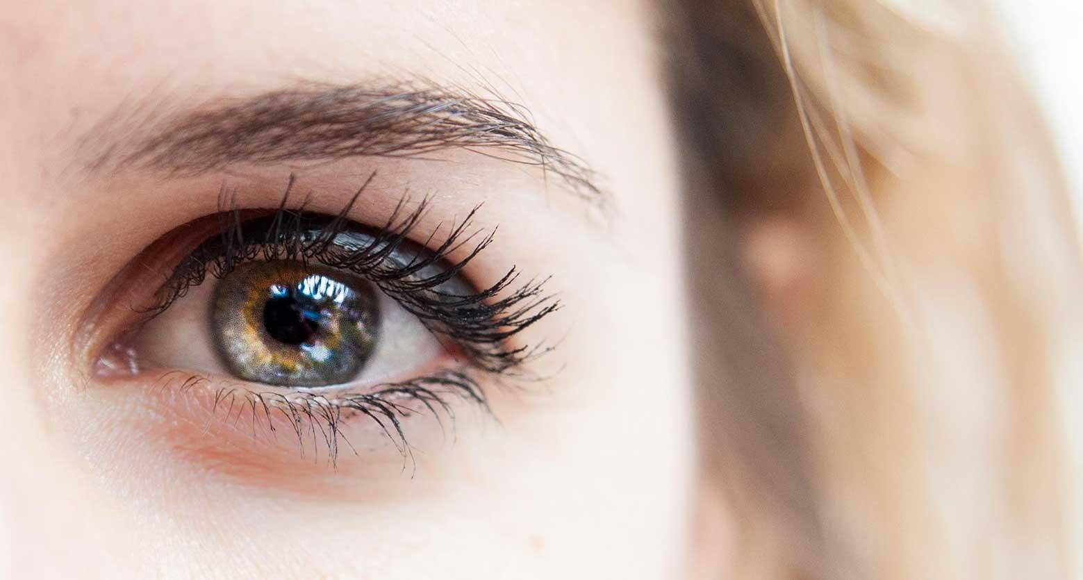 visage-Paulinebyoga-yeux