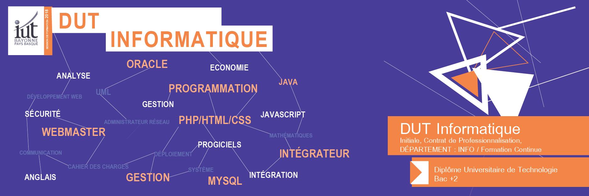 dut_bandeau_et_vignette_info-iut_bayonne-paysbasque-1